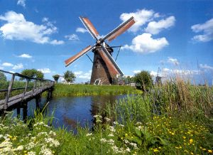 boerencamping Zuid-Holland